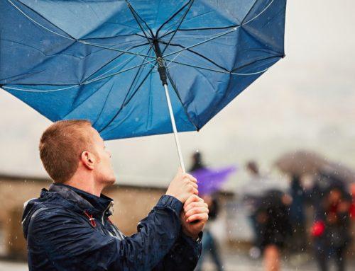 Les bons réflexes en cas de tempêtes et de vents forts